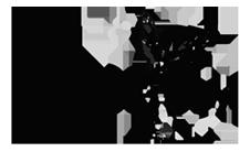 strekkoza-logo-1